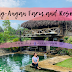 |TRAVEL| Bag-Angan Farm and Resort, Labo, Camarines Norte, Philippines