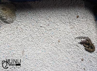 Penggunaan Pasir Gumpal Papin Hari Ketiga