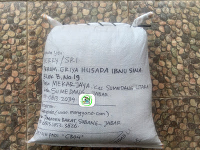 Benih Padi Pesanan  HERRY / SRI Sumedang, Jabar.   (Setelah di Packing).