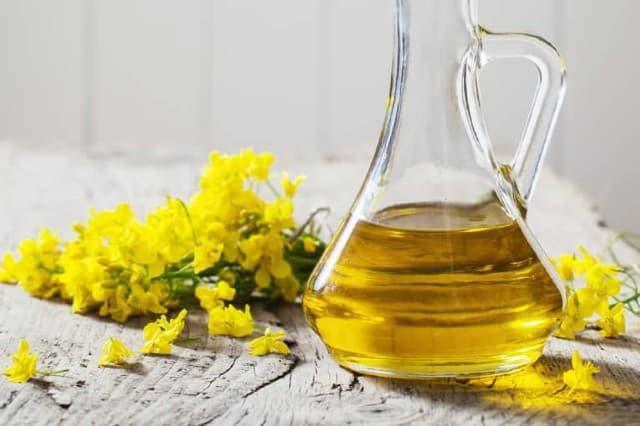 Canola oil là gì ? Có gây hại sức khỏe không