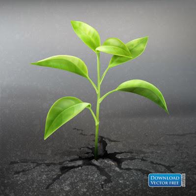 nen-do-hoa-cay-xanh-non-moc-tu-dat-da-seedlings-with-land-vector-7930