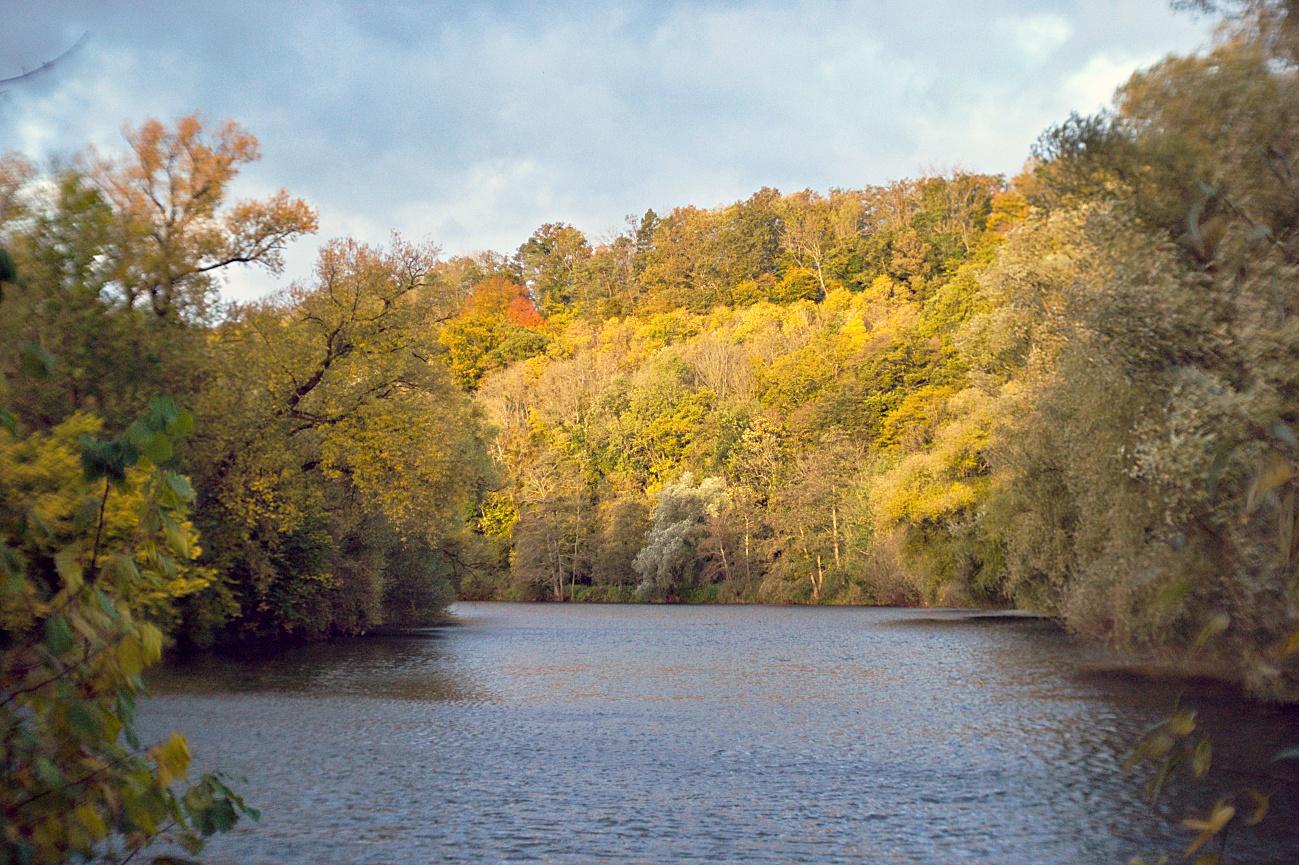 Bild des Tages #150 — Herbst at it best
