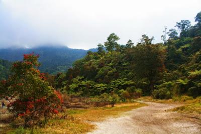 Jalan keliling kawah Talaga Bodas.