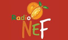 Radio Naranjo en Flor