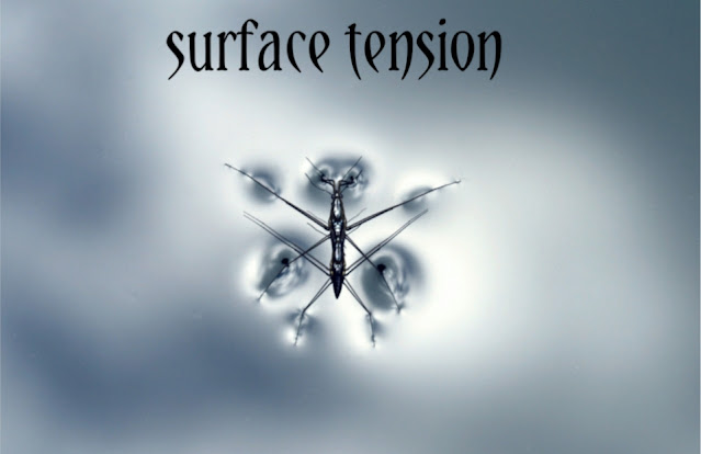 what is surface tension in physics