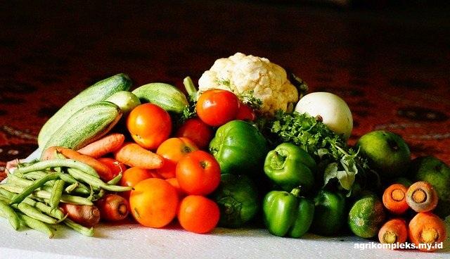 Peluang Pertanian Organik di Indonesia
