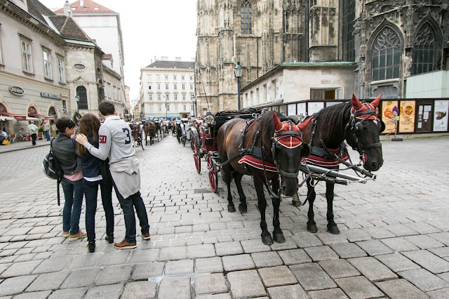 Carrozze con cavalli al Duomo (Stephansdom)-Vienna