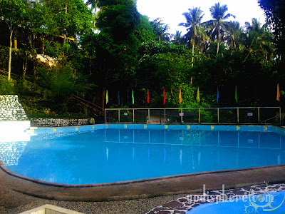 Blue swimming pool with wild trees at the background