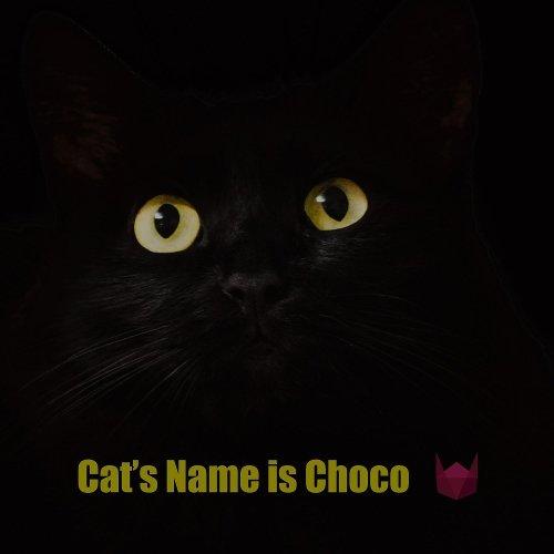 WindyCat – Cat's Name is Choco – Single