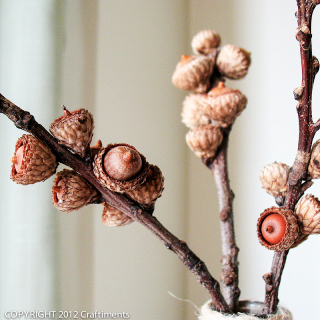 Craftiments:  Branches of baby acorns