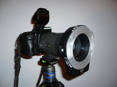 Makroblitz an einer Olympus Kamera