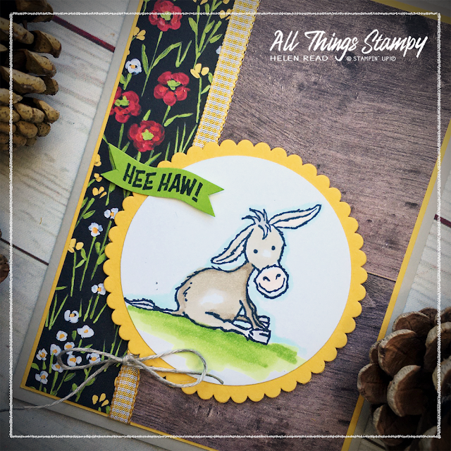Darling Donkeys Flowers Field Stampin Up