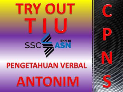 Try Out Tes Intelegensi Umum (TIU) Pengetahuan Verbal CPNS 2021