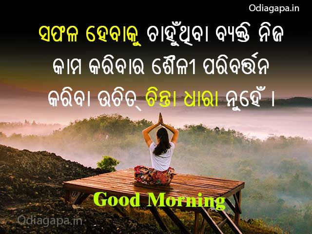 Successfull Odia Shayari Status