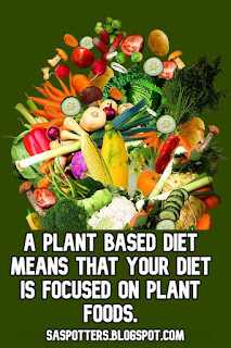 A plant based diet means that your diet is focused on plant foods.
