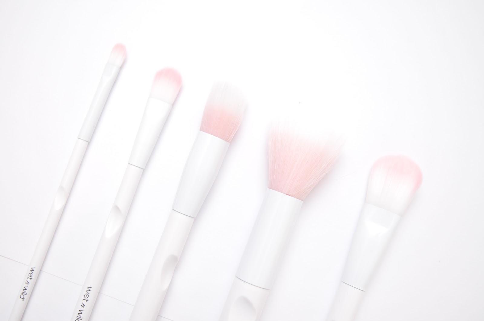 Wild N Wet Brushes