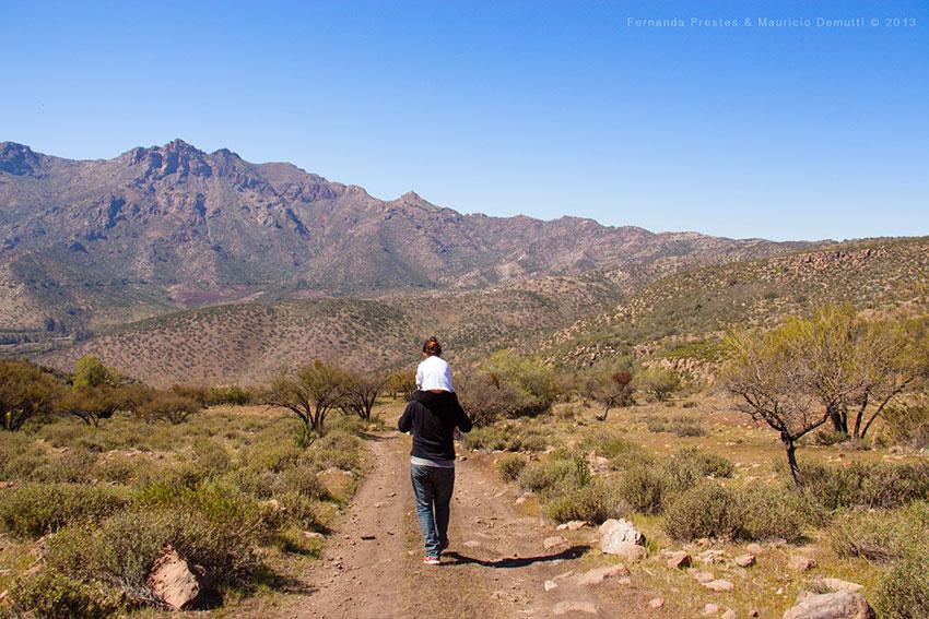 Cerro de Los Andes