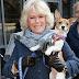 Η Δούκισσα αγαπά τους σκύλους