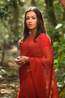 Catherine Tresa Photos from Naga Kanya Movie TollywoodBlog