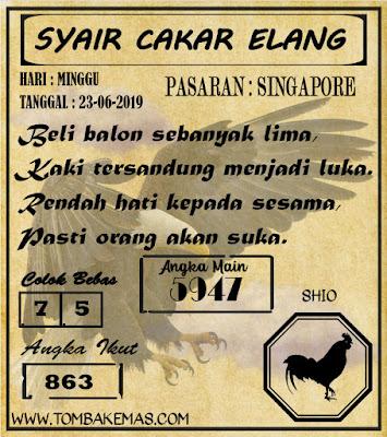 SYAIR SINGAPORE 23-06-2019