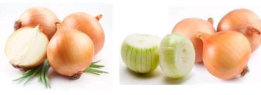 Perbedaan Bawang Bombay dengan Bawang Merah