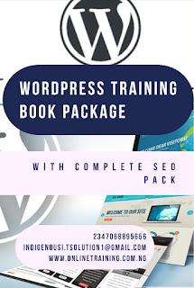 Professional Blog Designing Training With WordPress