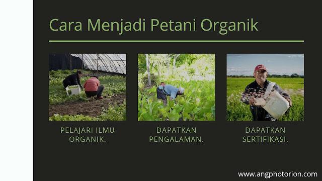 Cara menjadi petani organik