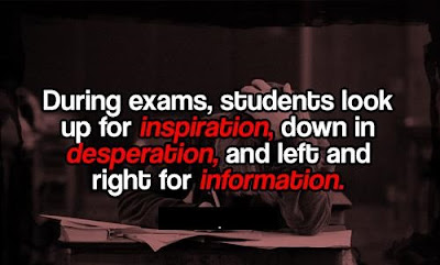 Funny Exam Quotes
