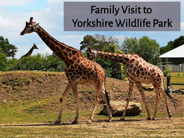 Yorkshire wildlife park header