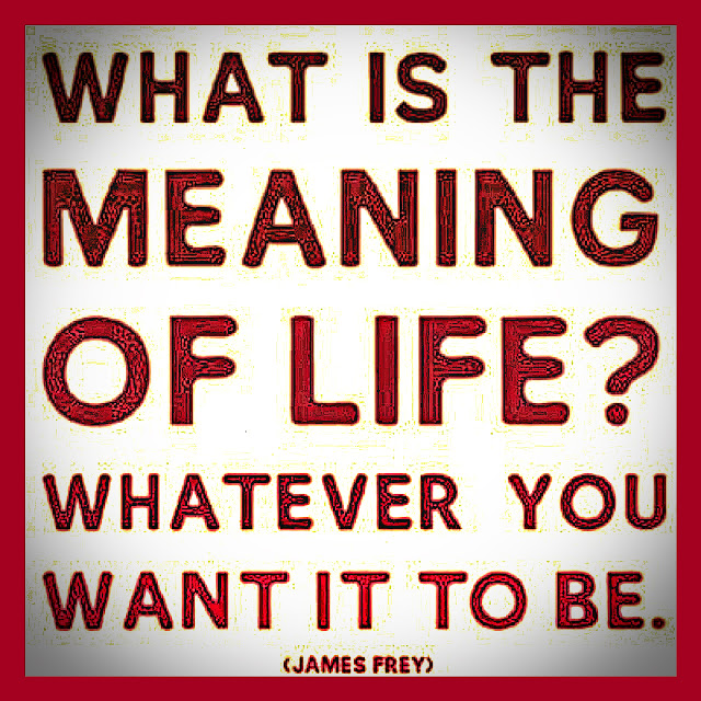 What is the meaning of life? Whatever you want it to be.#quotes #thoughts #life #relatable
