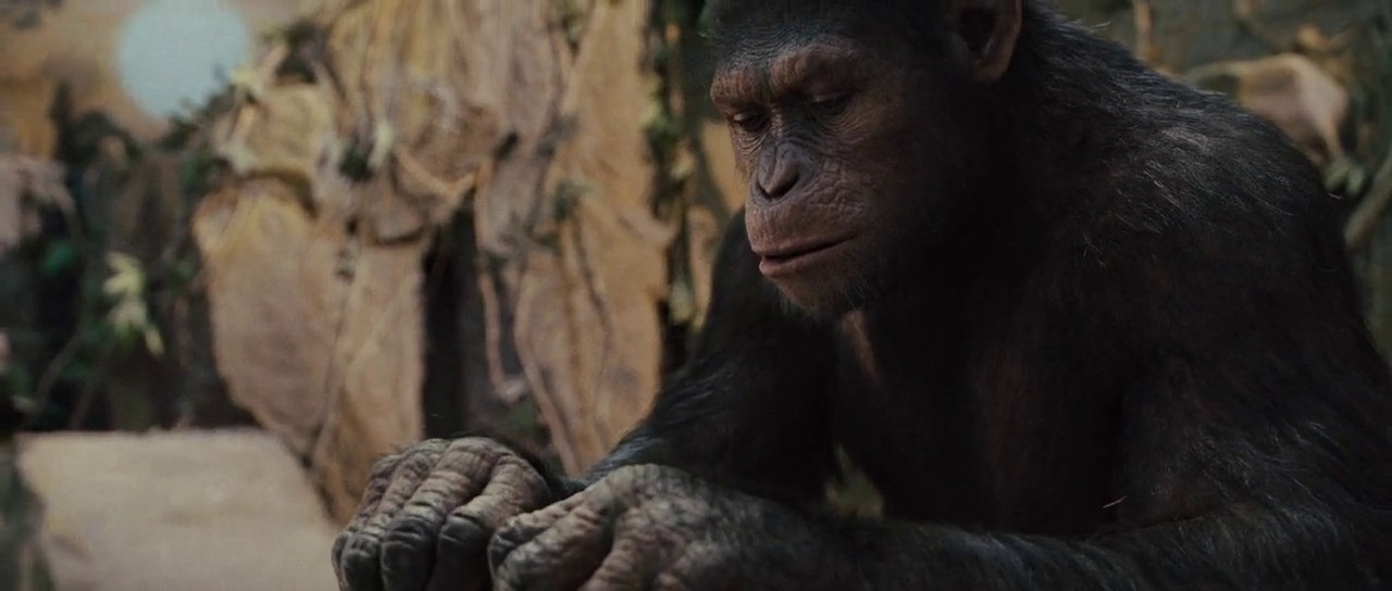 archives of the apes rise of the planet of the apes 2011 part 24. Black Bedroom Furniture Sets. Home Design Ideas
