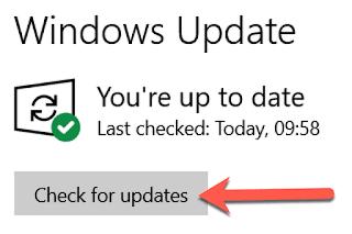 Windows Check for Update Windows 11