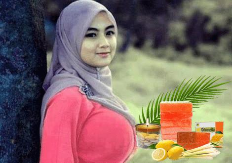 Manfaat Sabun Citronella untuk Payudara - Sabun Bidoyi Citronella Gtren