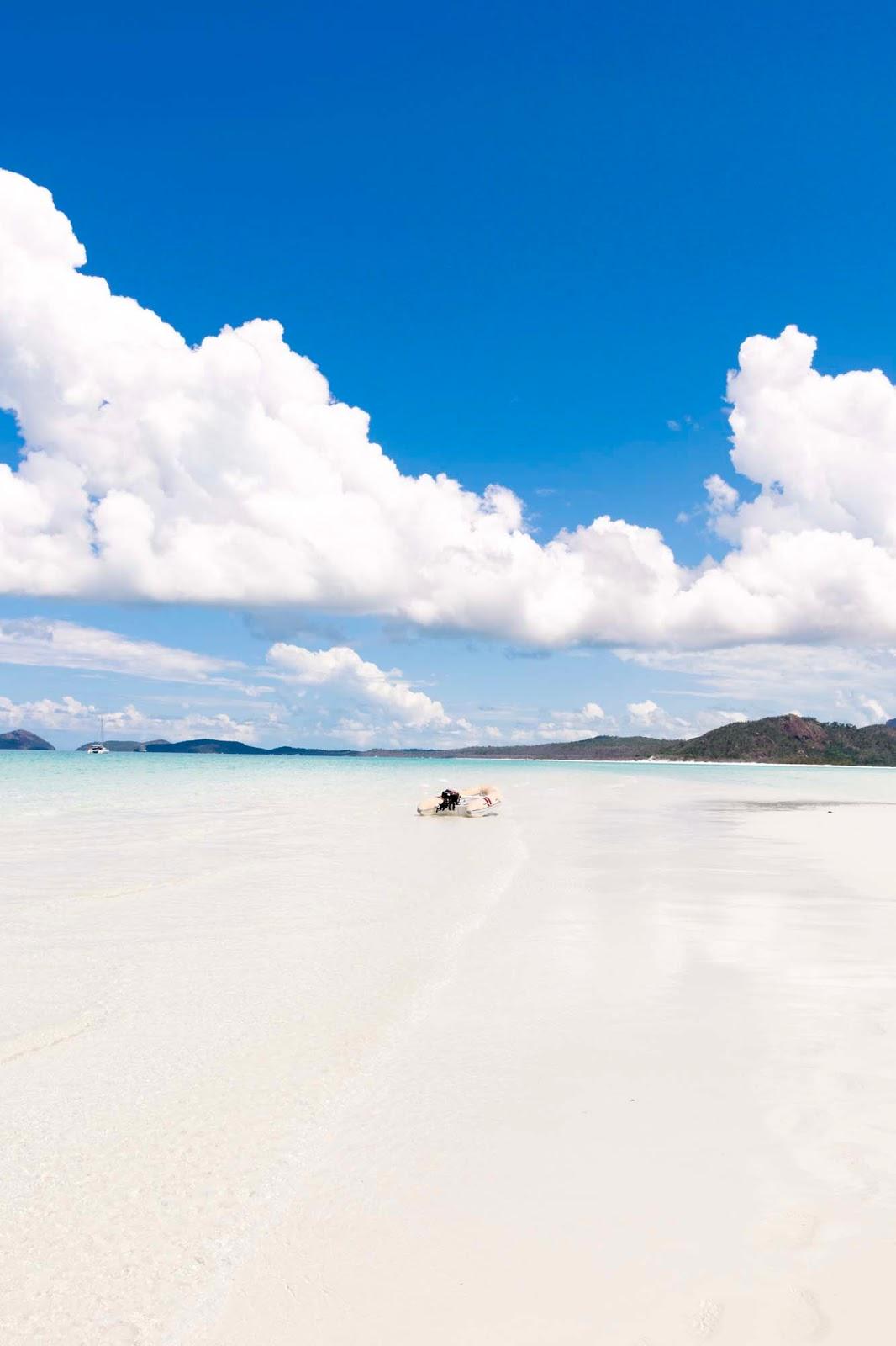 beach in the whitsundays