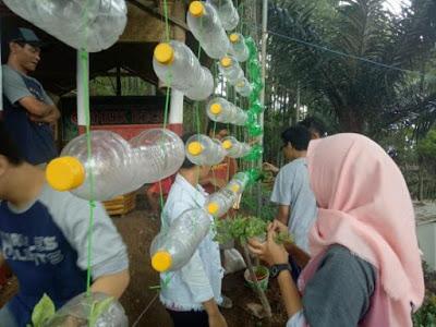 6 Cara Membuat Taman Gantung Dari Botol Bekas