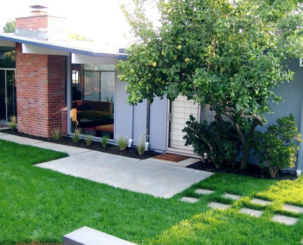 mid century modern home with landscaping