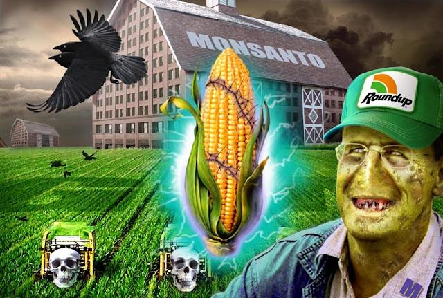 Por que Monsanto colheu sua parcela de polêmicas