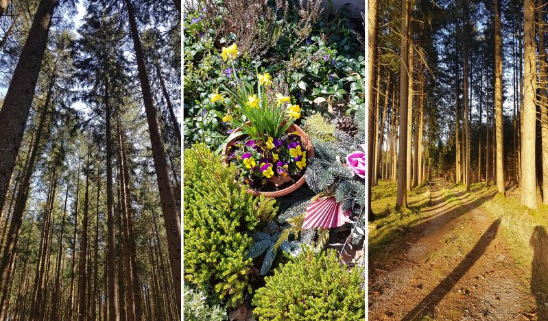 Spaziergänge durch den Wald oder zum Friedhof