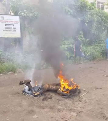 Thief burnt at Federal Polytechnic, Nekede