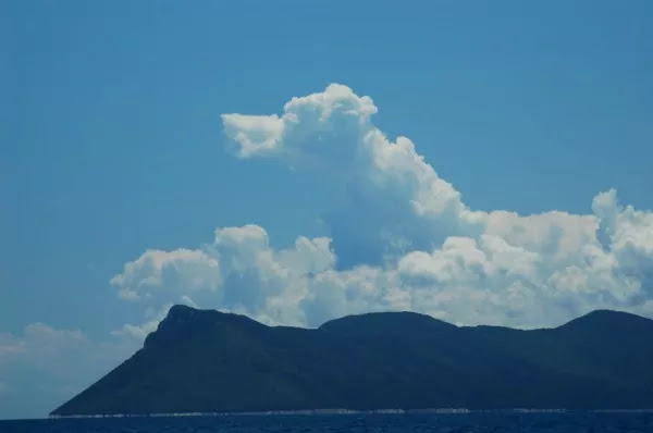 These Dog-Shaped Clouds Remind Us That Our Canine Friends Are A Gift Sent From Heaven