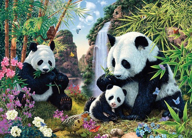 Riddle of Finding Hidden Panda in Picture Puzzle