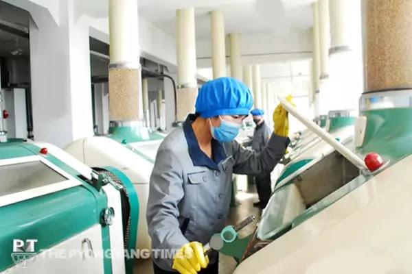 (1) Pyongyang Wheat Flour Processing Factory