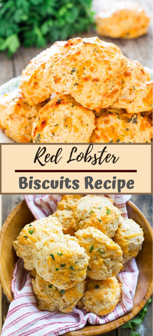Red Lobster Biscuits #vegan #vegetarian #soup #breakfast #lunch