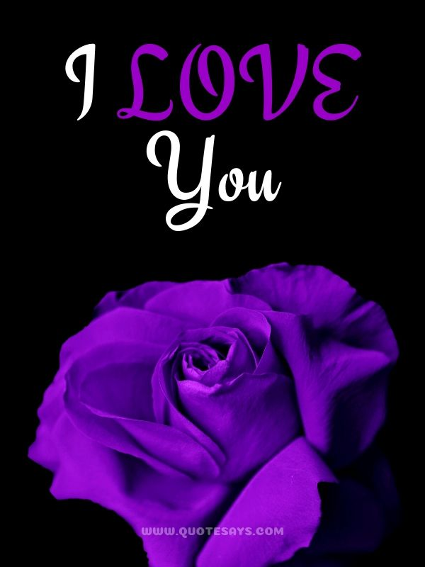 I Love You Images with Violet Rose