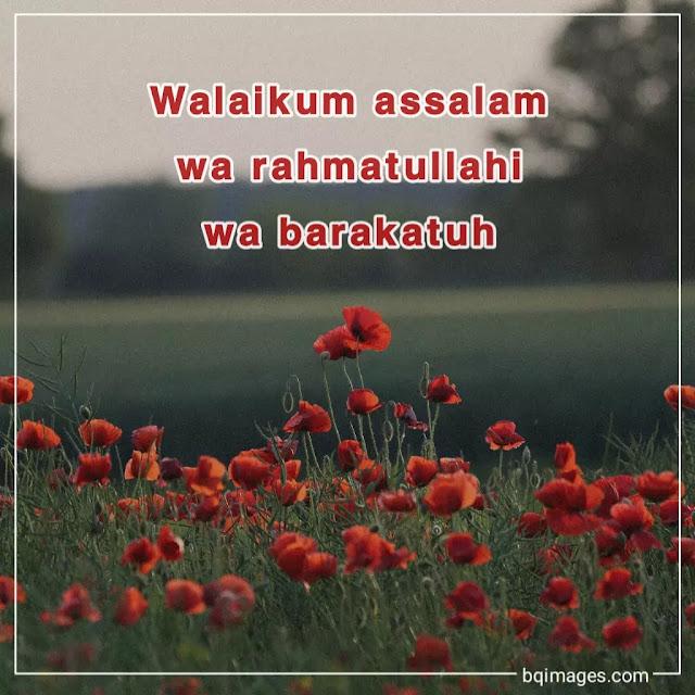 walaikum assalam