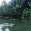 Balong Sirah Cisewu Mata Air Bersejarah di Garut Selatan