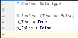 Boolean data type in Python