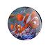 Procurando Nemo - Botton (#PN002) - 3,8 cm