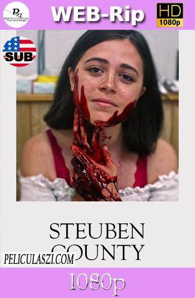 Steuben County (2020) HD WEBRip 1080p SUBTITULADA