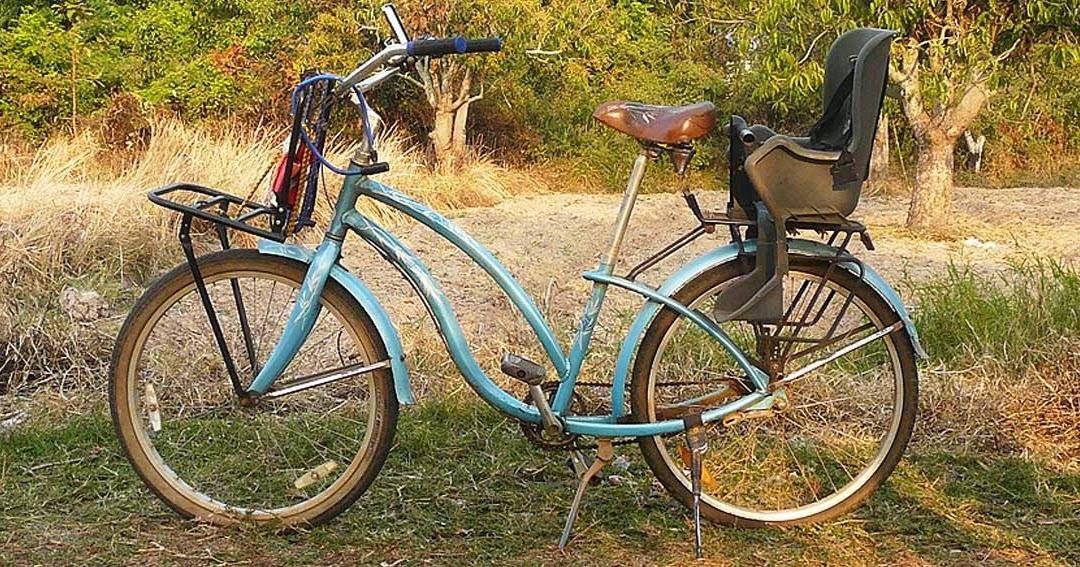 A Vegan In Da House My Trek Beach Cruiser Bicycle